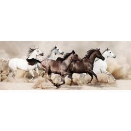 Stampeding Horses - Frameless Free Floating Tempered Art Glass