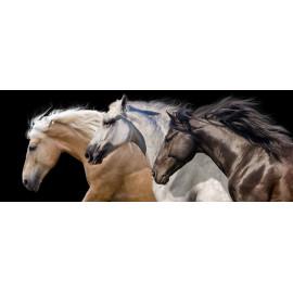 Trio of  Horses - Frameless Free Floating Tempered Art Glass