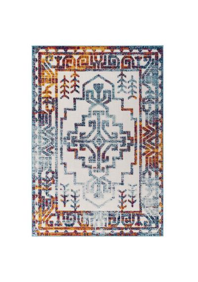 Distressed Multi Colored Southwestern Design Indoor Outdoor Rug