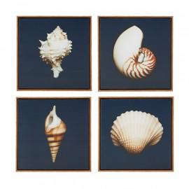 Shells on Deep Blue Canvas Framed Set of 4