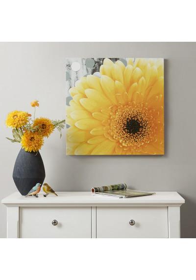 Big Yellow Daisy Canvas Wall Art